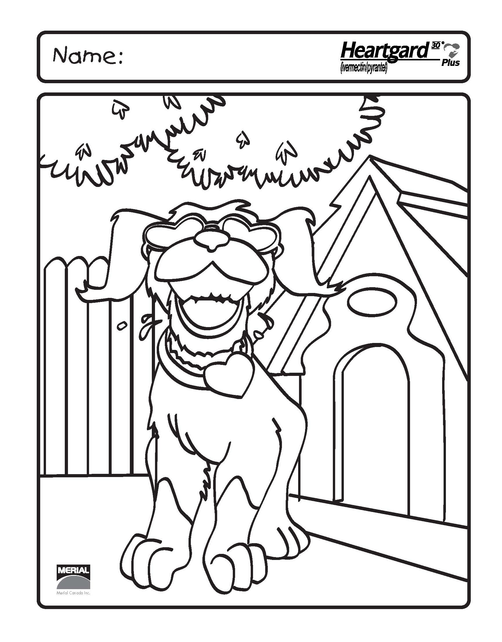 Animal Hospital Coloring Pages : Animal hospital colouring pages